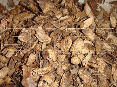 peanut-shell